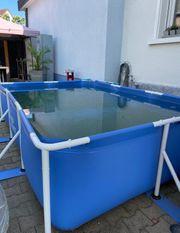 Pool 300 x 200 x