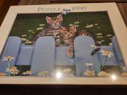 Puzzle 1000 Teile Motiv Katze