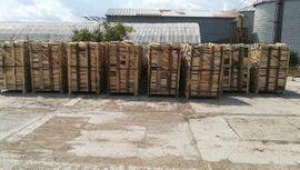 brennholz premium: Kleinanzeigen aus Kassel Nord-Holland - Rubrik Holz