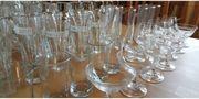 Gläser 130 Schnapsgläser Obstlergläser Pinneken