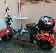 Elektro Scooter E-Roller E-Scooter