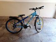Fahrrad MTB 26 Cygnus Dirt
