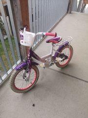 16 Zoll Mädchen Fahrrad Emily