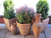 Pflanzen Pflanzkübel und -Schalen