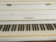 Klavierunterricht Hausbesuche