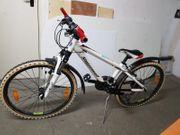 Herren-Fahrrad Steppenwolf weiß 21 Gänge
