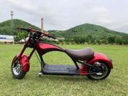 Electric Scooter Rooder super Chopper