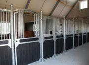 82 Pferdebox Birmingham Vorderwand Pferdestall