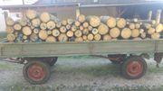 Brennholz Kaminholz Feuerholz-3 Ster Fichte