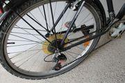 biete 26 Fahrrad