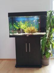 Aquarium Juwel Rio - Set inkl