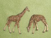 Preiser H0 1 87 Giraffen