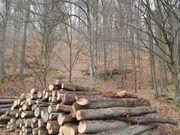 Brennholz Buche für den Sparfuchs