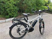 Damen Fahrrad Riese und Müller