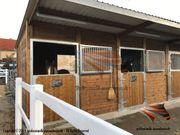 PFERDE Außenbox Pferdestall Pferdeboxen Weidehütte