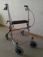 Rollator mit Sitzbrett
