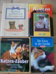 3 Katzenbücher Katzen - Geschichten Katzen -