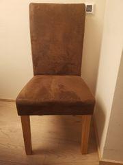 Esszimmer Stühle 6 Stück Hochlehner