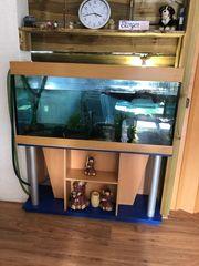 Verkaufe ein Panorama Aquarium 450