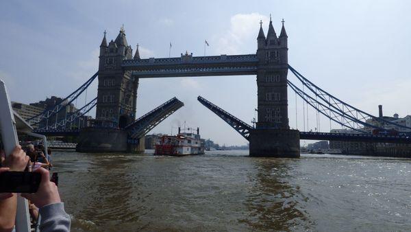 Mitreisende ins Vereinigte Königreich gesucht