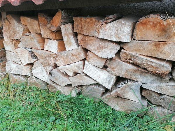 ofenfertiges Brennholz Ulme zu verkaufen