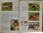 Hunde Motiv-Briefmarken in Zigarettenbilderalbum f