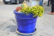 Großer Keramik Blumentopf