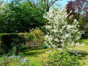 Garten Schrebergarten auf den Fildern