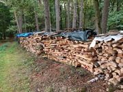 Brennholz weichholz zu verkaufen mit