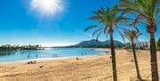 Suche Reisebegleitung für Mallorca