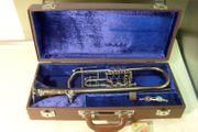 Hochwertige Trompete Meisterinstrument