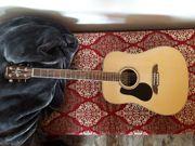 Gitarre Linkshänder Alvarez RD-26L inkl