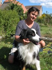 familiäre Hundepension Hundebetreuung Hundesitter Hundetagesstätte
