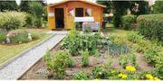Kleingarten im KGV abzugeben