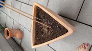 Dreieckiger Tontopf Blumentopf