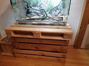 Kornatterterarium mit 3 Schlangen und
