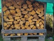 Kaminholz Brennholz Feuerholz Gemischt Kiefer