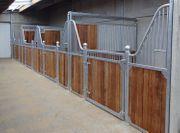 12 Pferdebox Oxford Pferdestall Stall