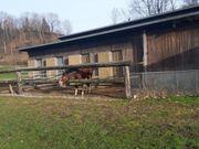 Einstellplätze in Feldkirch zu vermieten