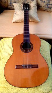 Aria Konzert Gitarre A 575