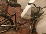 3 Stuck Fahrrad