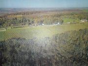 Grundstück Weinberg