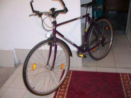 Mountain-Bikes, BMX-Räder, Rennräder - Wheeler 5400 Cross Line