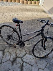 Checker Pig Fahrrad
