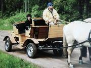 Neuwertige Pferdekutsche altersbedingt zu verschenken