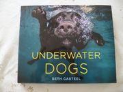 Buch Underwater Dogs in einwandfreiem
