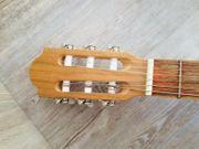 Gitarre PRO NATURA Silver Series -