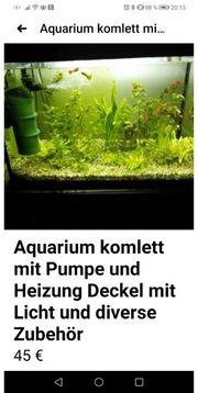 Aquarium 60 mit Licht und