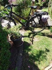 E bike von maxcycles mit