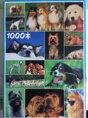 Puzzle 1000 Teile -Motiv Hunde-